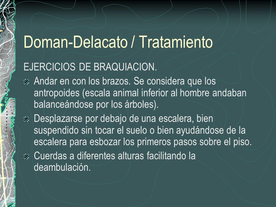 Doman-Delacato / Tratamiento EJERCICIOS DE BRAQUIACION. Andar en con los brazos. Se considera que los antropoides (escala animal inferior al hombre an