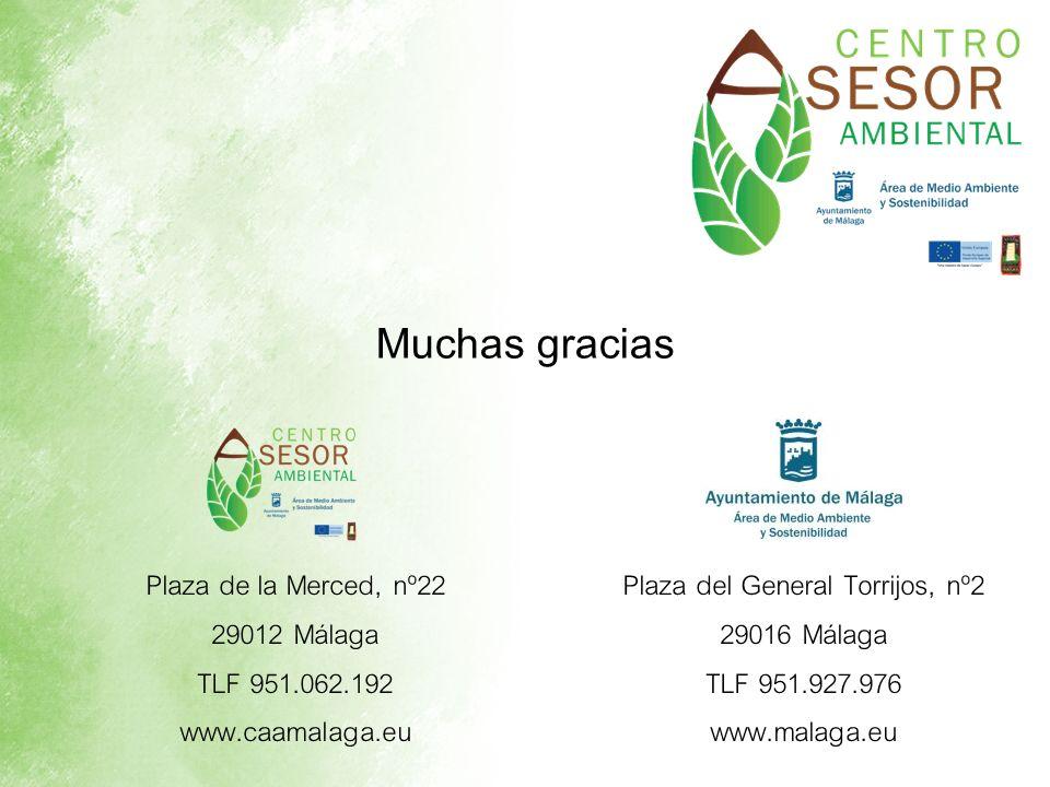 Muchas gracias Plaza del General Torrijos, nº2 29016 Málaga TLF 951.927.976 www.malaga.eu Plaza de la Merced, nº22 29012 Málaga TLF 951.062.192 www.ca