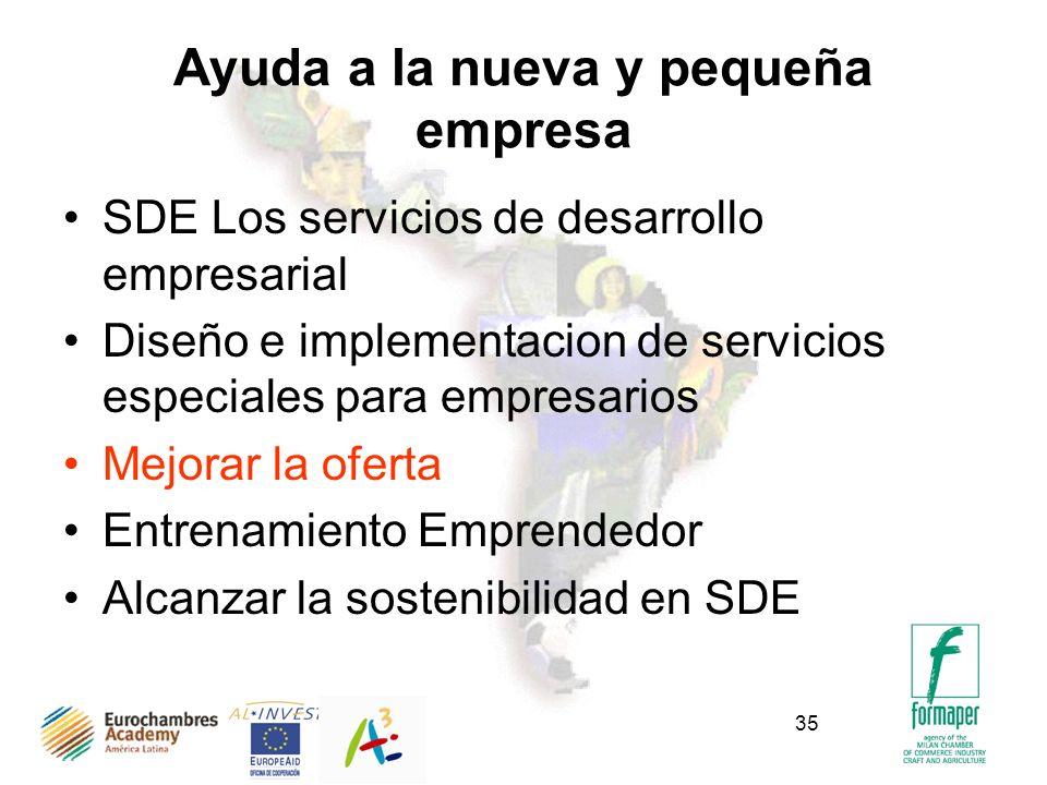 35 Ayuda a la nueva y pequeña empresa SDE Los servicios de desarrollo empresarial Diseño e implementacion de servicios especiales para empresarios Mej