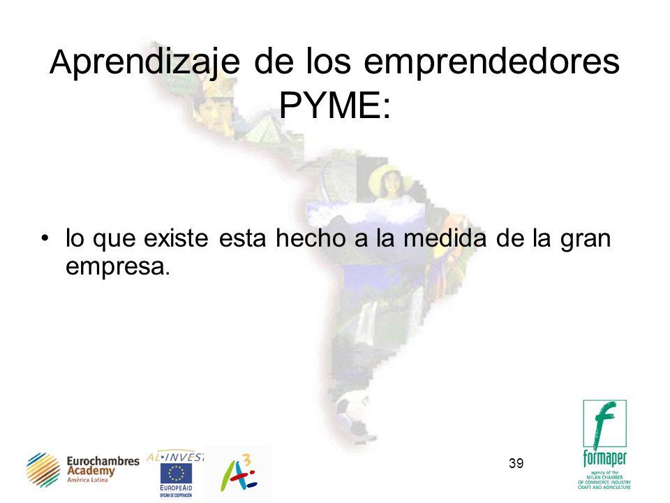 39 A prendizaje de los emprendedores PYME: lo que existe esta hecho a la medida de la gran empresa.
