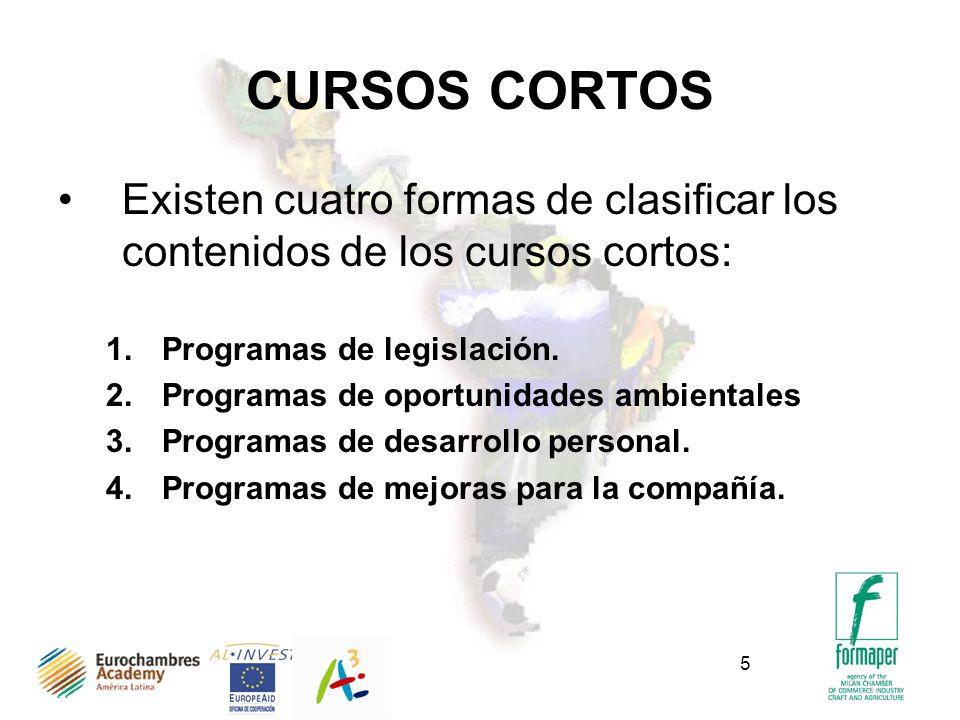 5 CURSOS CORTOS Existen cuatro formas de clasificar los contenidos de los cursos cortos: 1.Programas de legislación. 2.Programas de oportunidades ambi