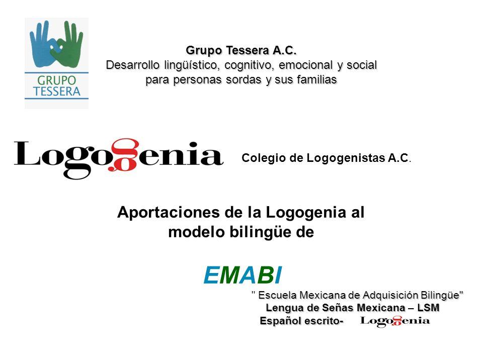 Desarrollo de la Logogenia La Logogenia fue creada y desarrollada a partir de la segunda mitad de la década de los 90 por la Dra.