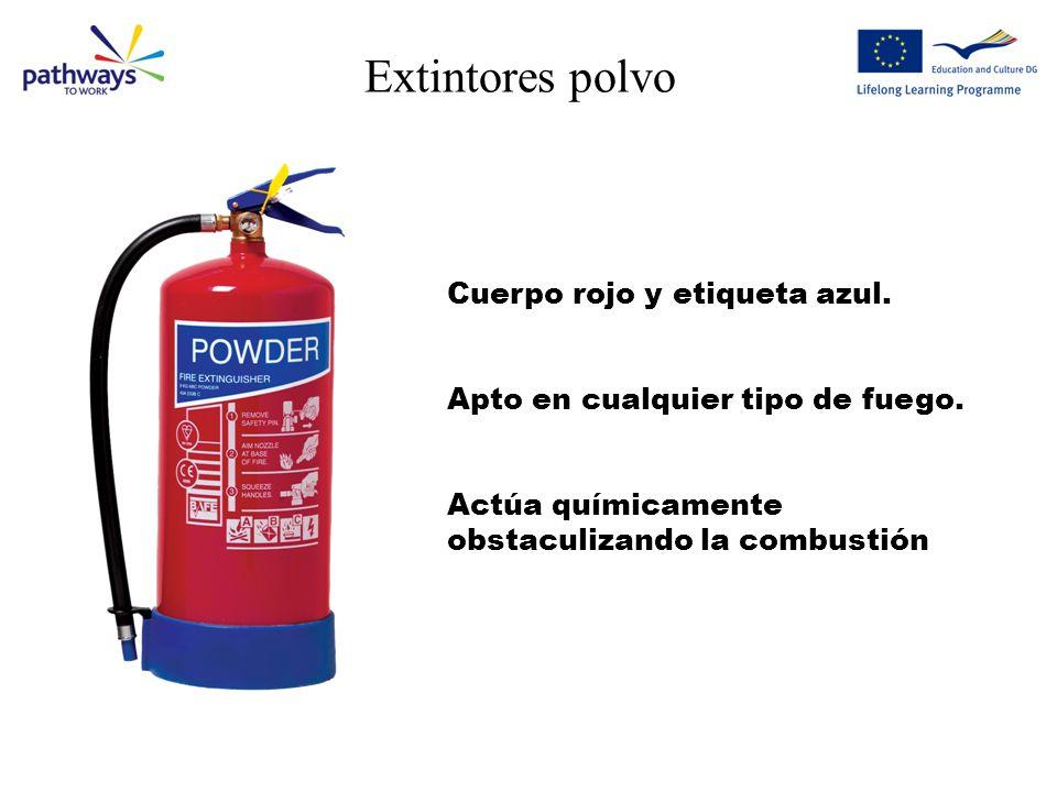 Extintores polvo Cuerpo rojo y etiqueta azul.Apto en cualquier tipo de fuego.