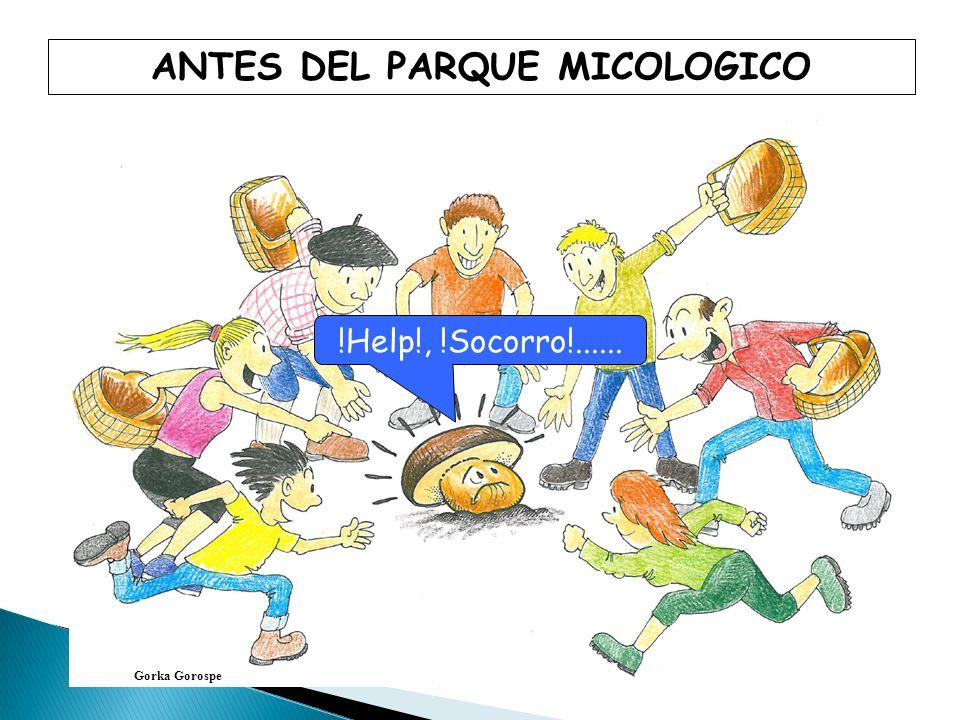 ANTES DEL PARQUE MICOLOGICO Gorka Gorospe !Help!, !Socorro!......