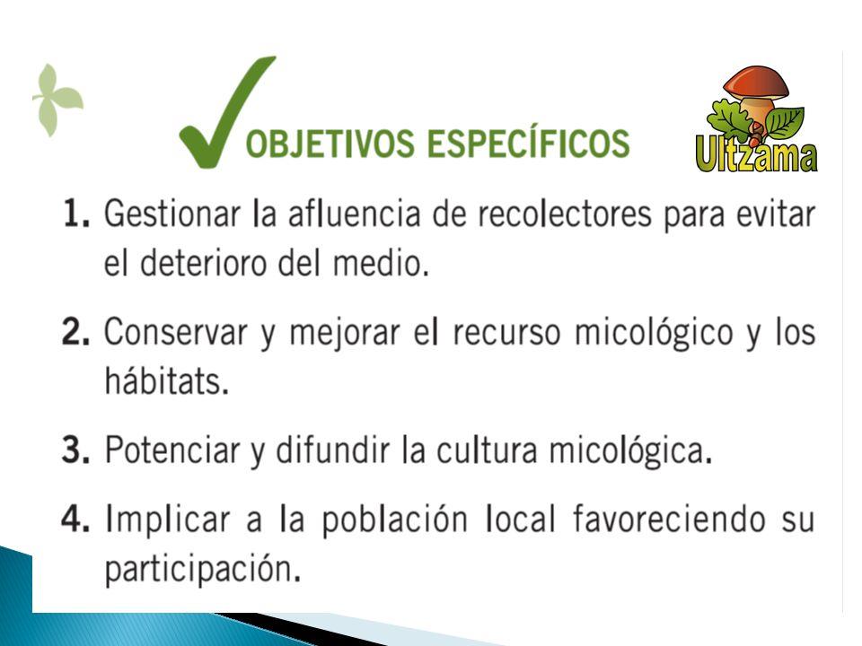 TIPOS DE PERMISOS 2012/2013 DIAANUAL ORDINARIOS1.RECREATIVO 5 50/90 ESPECIALES 2.