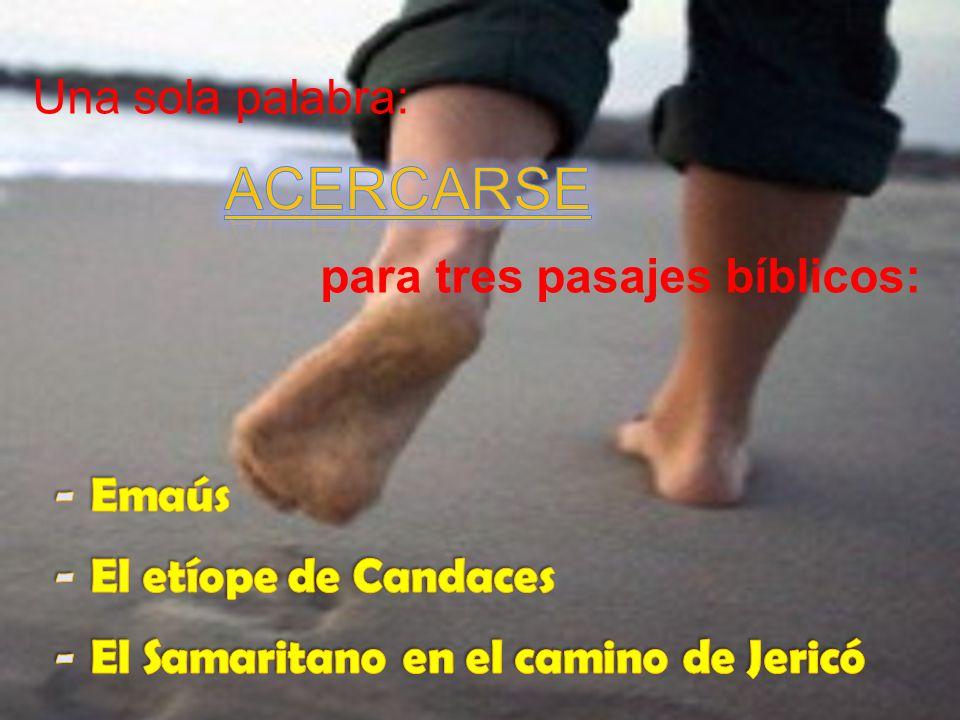 De la consideración del Encuentro de Emaús en cinco momentos, al camino de los que buscan y al de los heridos en el camino.