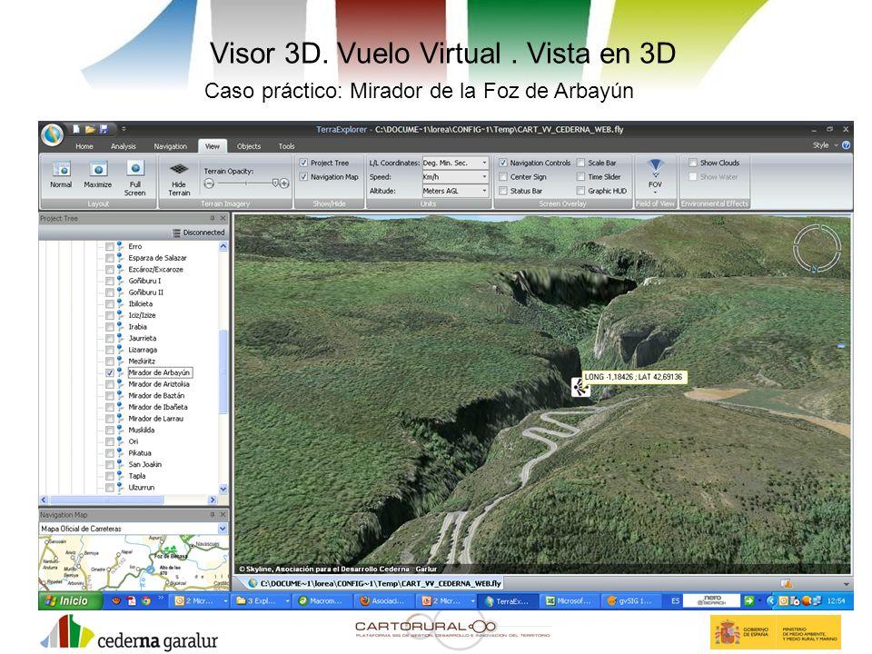 Visor 3D. Vuelo Virtual. Vista en 3D Caso práctico: Mirador de la Foz de Arbayún