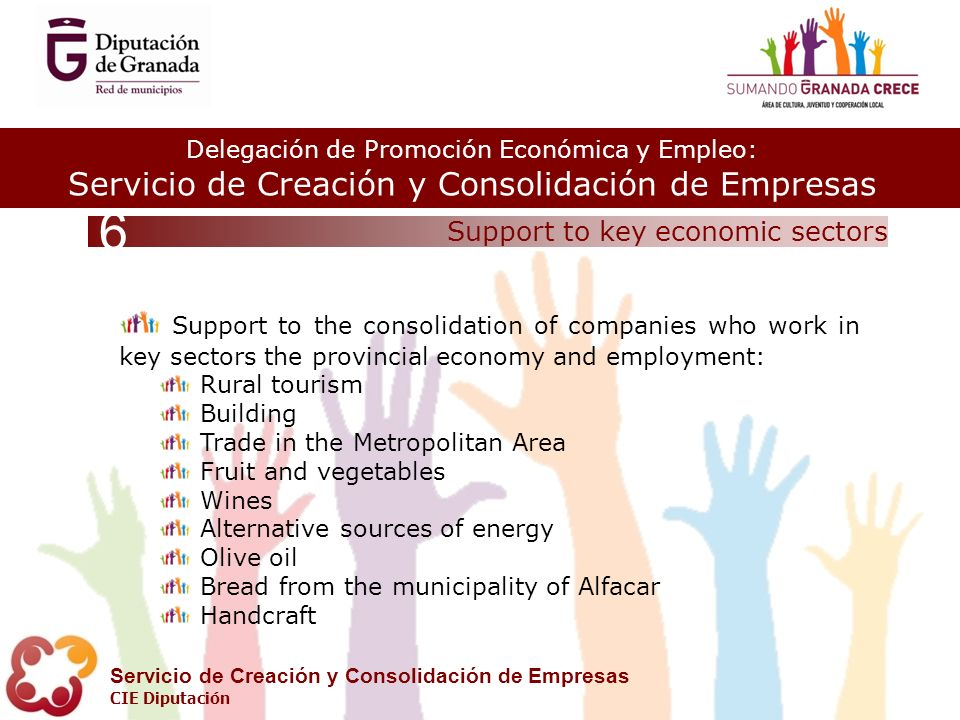 Delegación de Promoción Económica y Empleo: Servicio de Creación y Consolidación de Empresas CIE Diputación Support to key economic sectors 6 Support to the consolidation of companies who work in key sectors the provincial economy and employment: Rural tourism Building Trade in the Metropolitan Area Fruit and vegetables Wines Alternative sources of energy Olive oil Bread from the municipality of Alfacar Handcraft