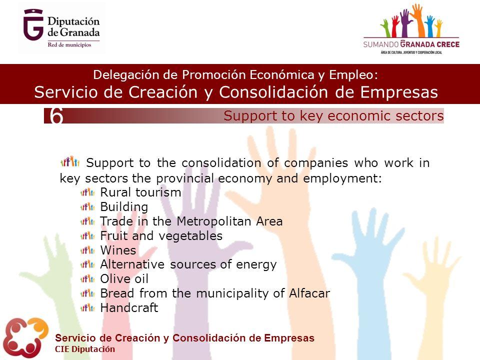 Delegación de Promoción Económica y Empleo: Servicio de Creación y Consolidación de Empresas CIE Diputación Support to key economic sectors 6 Support