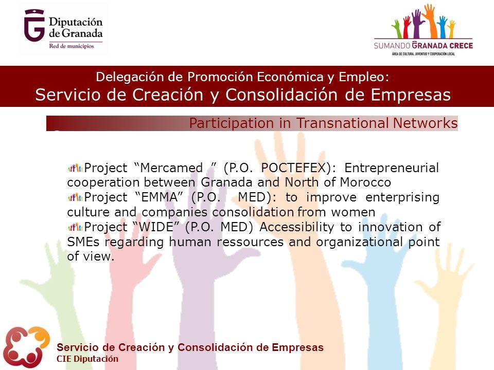 Delegación de Promoción Económica y Empleo: Servicio de Creación y Consolidación de Empresas CIE Diputación Participation in Transnational Networks 8 Project Mercamed (P.O.