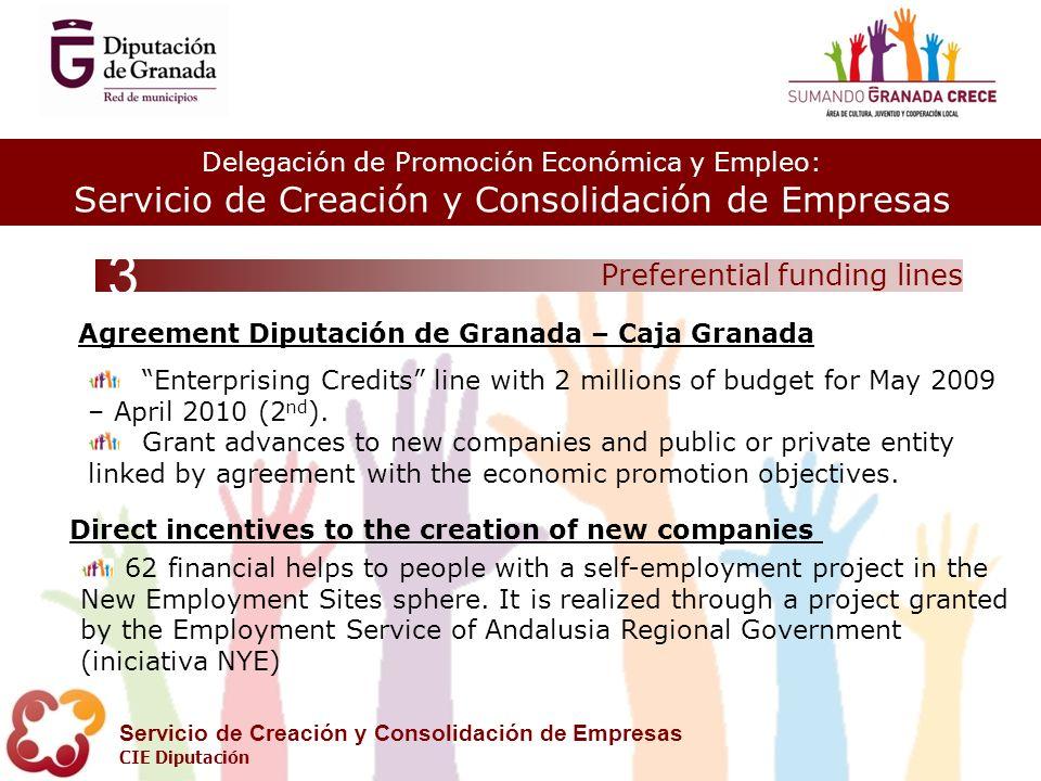 Delegación de Promoción Económica y Empleo: Servicio de Creación y Consolidación de Empresas CIE Diputación Preferential funding lines 3 Enterprising Credits line with 2 millions of budget for May 2009 – April 2010 (2 nd ).