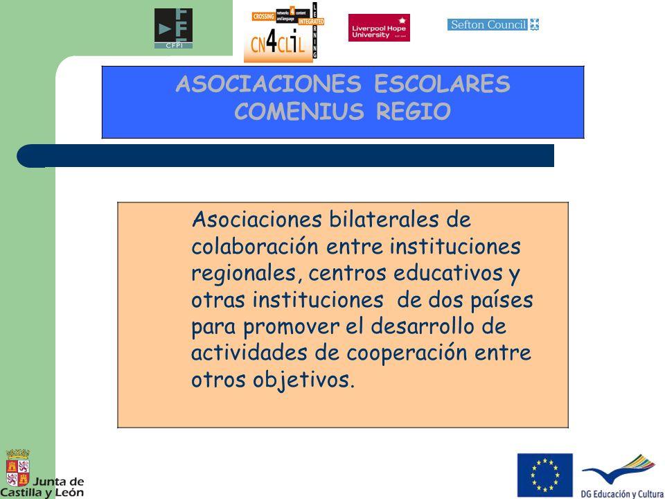 Asociaciones bilaterales de colaboración entre instituciones regionales, centros educativos y otras instituciones de dos países para promover el desar