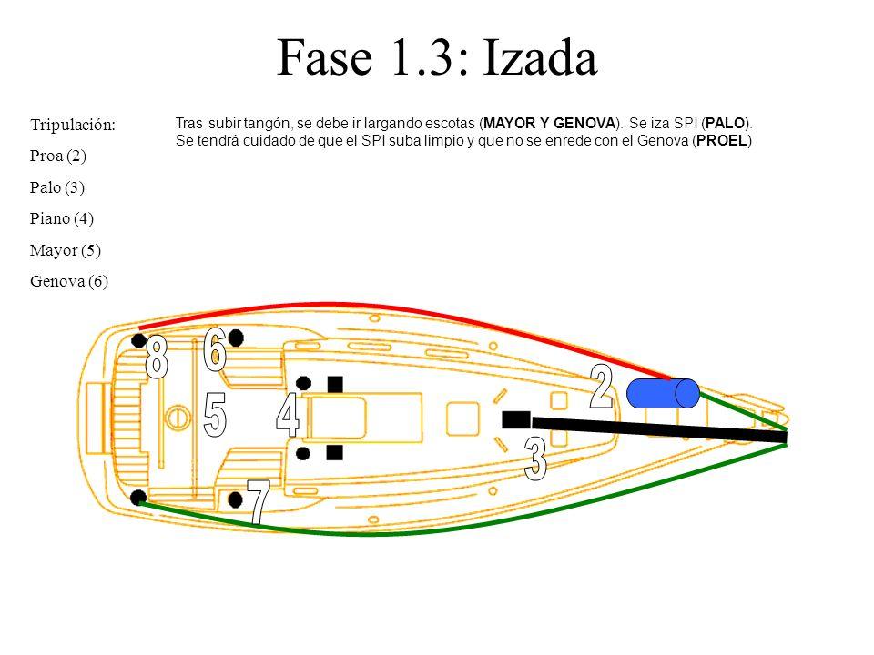 Fase 1.3: Izada Tripulación: Proa (2) Palo (3) Piano (4) Mayor (5) Genova (6) Tras subir tangón, se debe ir largando escotas (MAYOR Y GENOVA). Se iza