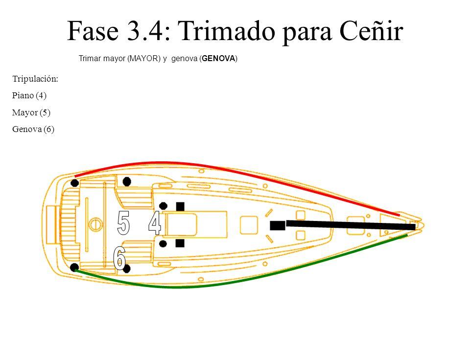 Fase 3.4: Trimado para Ceñir Tripulación: Piano (4) Mayor (5) Genova (6) Trimar mayor (MAYOR) y genova (GENOVA)
