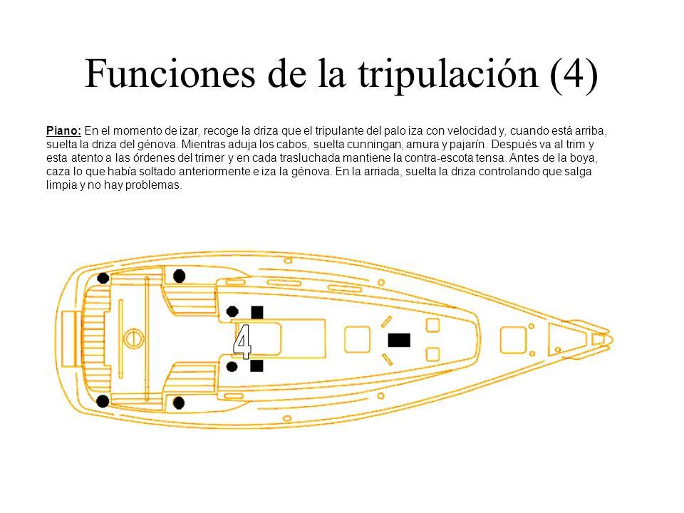 Funciones de la tripulación (4) Piano: En el momento de izar, recoge la driza que el tripulante del palo iza con velocidad y, cuando está arriba, suel