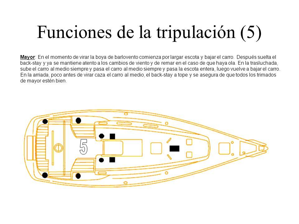 Funciones de la tripulación (5) Mayor: En el momento de virar la boya de barlovento comienza por largar escota y bajar el carro. Después suelta el bac