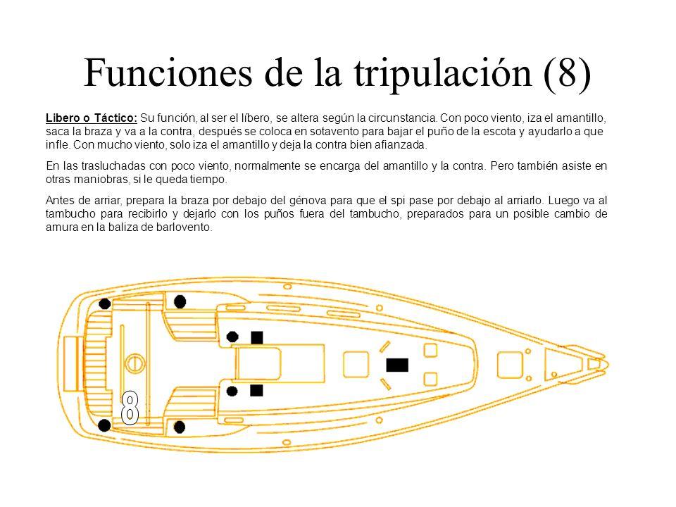 Funciones de la tripulación (8) Libero o Táctico: Su función, al ser el líbero, se altera según la circunstancia. Con poco viento, iza el amantillo, s