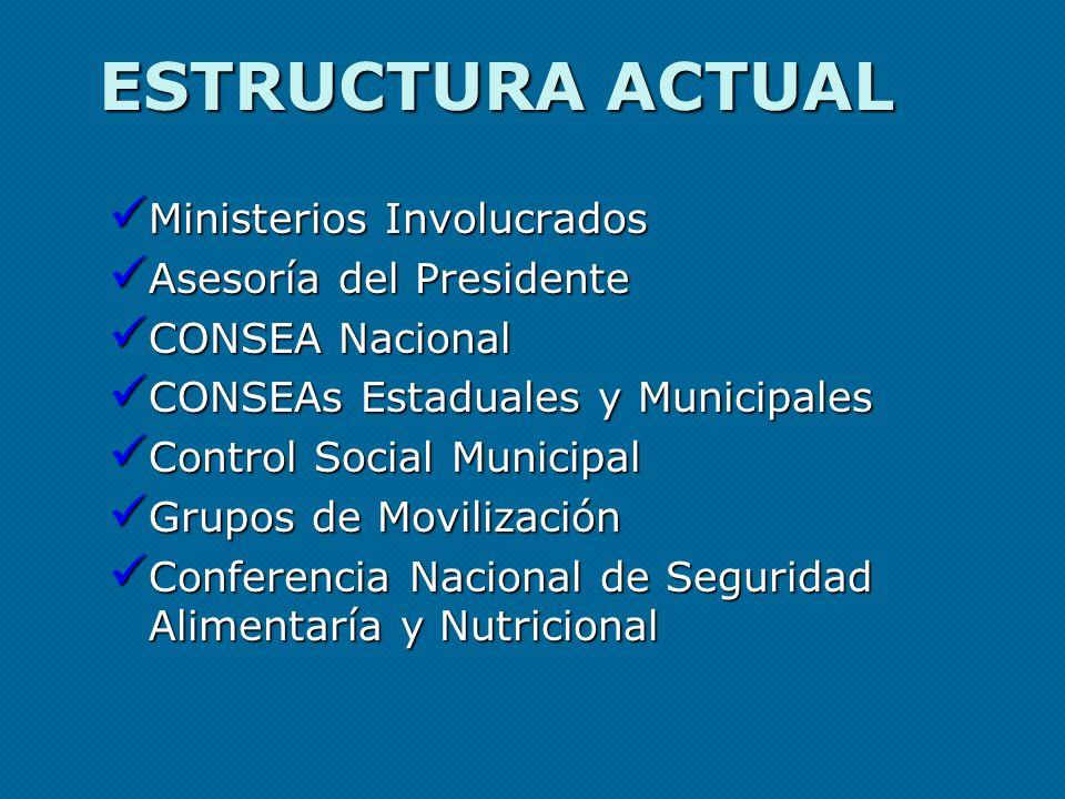ESTRUCTURA ACTUAL Ministerios Involucrados Ministerios Involucrados Asesoría del Presidente Asesoría del Presidente CONSEA Nacional CONSEA Nacional CO