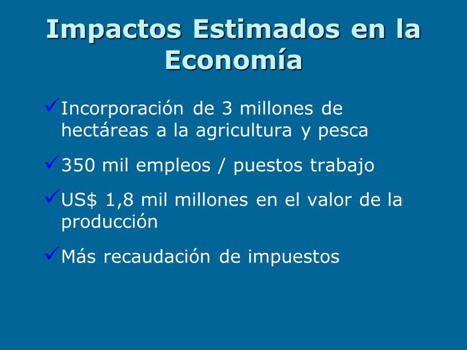 Impactos Estimados en la Economía Incorporación de 3 millones de hectáreas a la agricultura y pesca 350 mil empleos / puestos trabajo US$ 1,8 mil mill