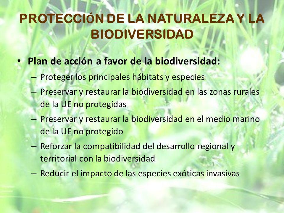 PROTECCI Ó N DE LA NATURALEZA Y LA BIODIVERSIDAD Plan de acción a favor de la biodiversidad: – Proteger los principales hábitats y especies – Preserva