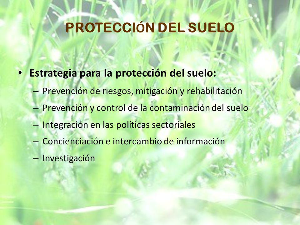 PROTECCI Ó N DEL SUELO Estrategia para la protección del suelo: – Prevención de riesgos, mitigación y rehabilitación – Prevención y control de la cont