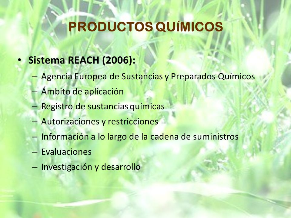 PRODUCTOS QU Í MICOS Sistema REACH (2006): – Agencia Europea de Sustancias y Preparados Químicos – Ámbito de aplicación – Registro de sustancias quími