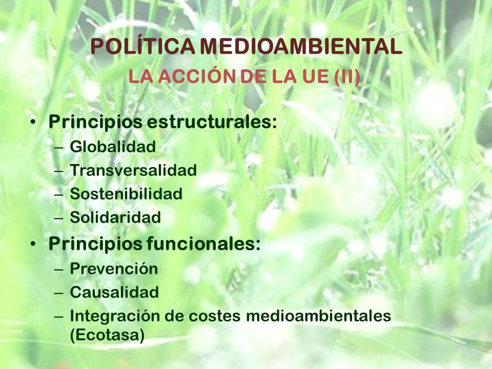 POLÍTICA MEDIOAMBIENTAL Principios estructurales: – Globalidad – Transversalidad – Sostenibilidad – Solidaridad Principios funcionales: – Prevención –