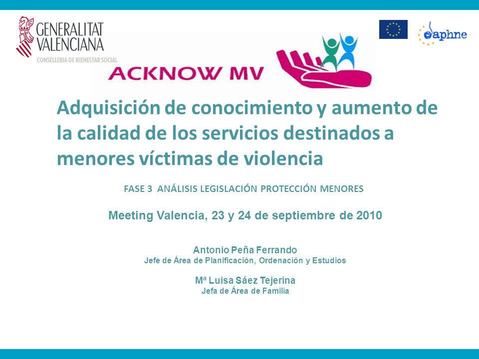 FASE 3 ANÁLISIS LEGISLACIÓN PROTECCIÓN MENORES Meeting Valencia, 23 y 24 de septiembre de 2010 Antonio Peña Ferrando Jefe de Área de Planificación, Or