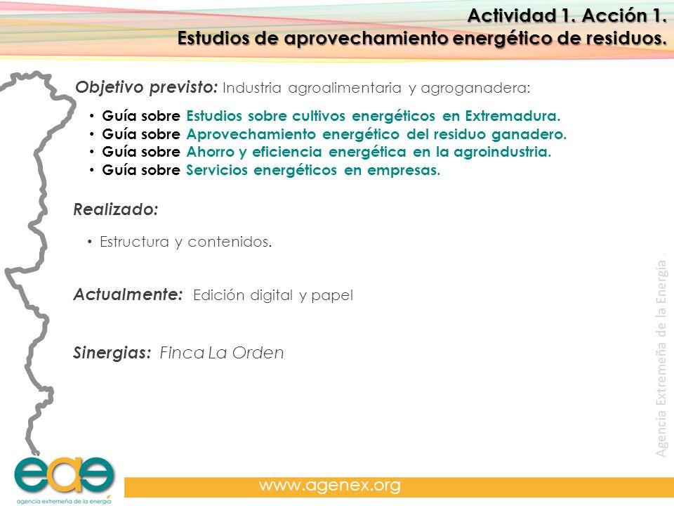 Agencia Extremeña de la Energía. www.agenex.org Actividad 1. Acción 1. Estudios de aprovechamiento energético de residuos. Objetivo previsto: Industri