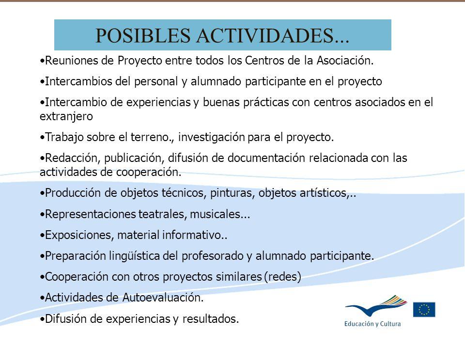 Delegación de Educación de Córdoba POSIBLES ACTIVIDADES... Reuniones de Proyecto entre todos los Centros de la Asociación. Intercambios del personal y