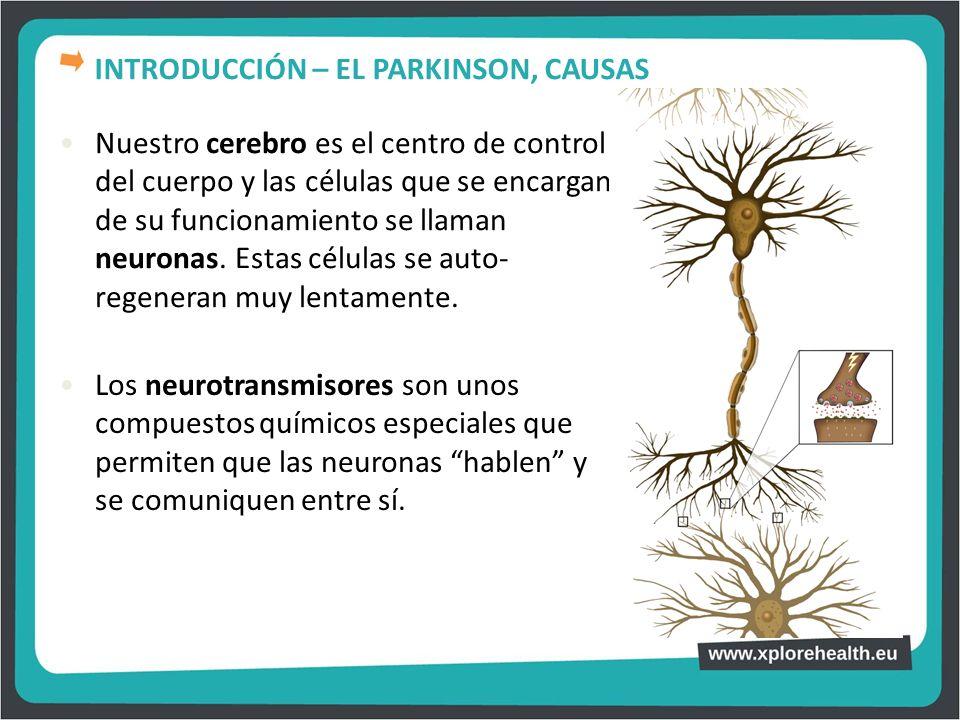 Nuestro cerebro es el centro de control del cuerpo y las células que se encargan de su funcionamiento se llaman neuronas. Estas células se auto- regen