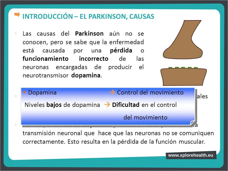 Las causas del Parkinson aún no se conocen, pero se sabe que la enfermedad está causada por una pérdida o funcionamiento incorrecto de las neuronas en
