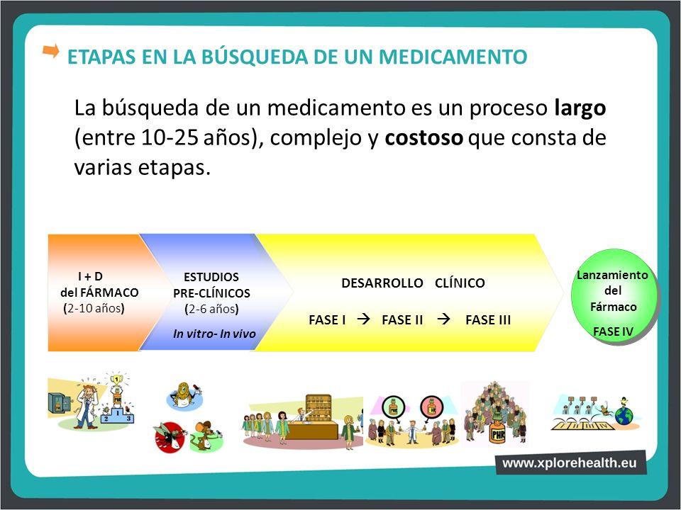 La búsqueda de un medicamento es un proceso largo (entre 10-25 años), complejo y costoso que consta de varias etapas. I + D del FÁRMACO (2-10 años) DE