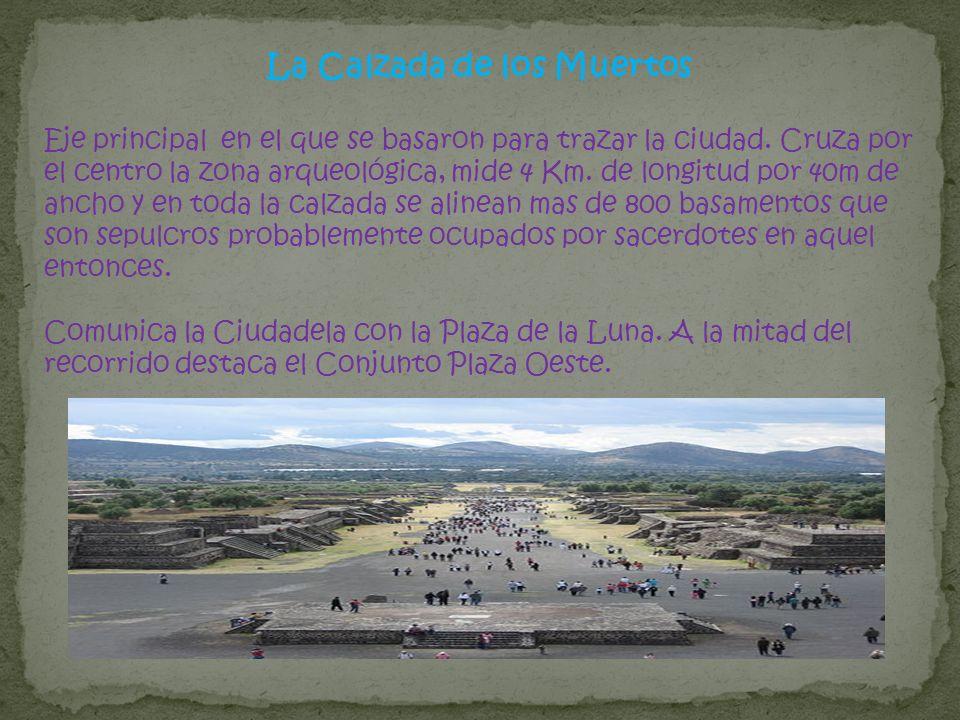 La Calzada de los Muertos Eje principal en el que se basaron para trazar la ciudad. Cruza por el centro la zona arqueológica, mide 4 Km. de longitud p