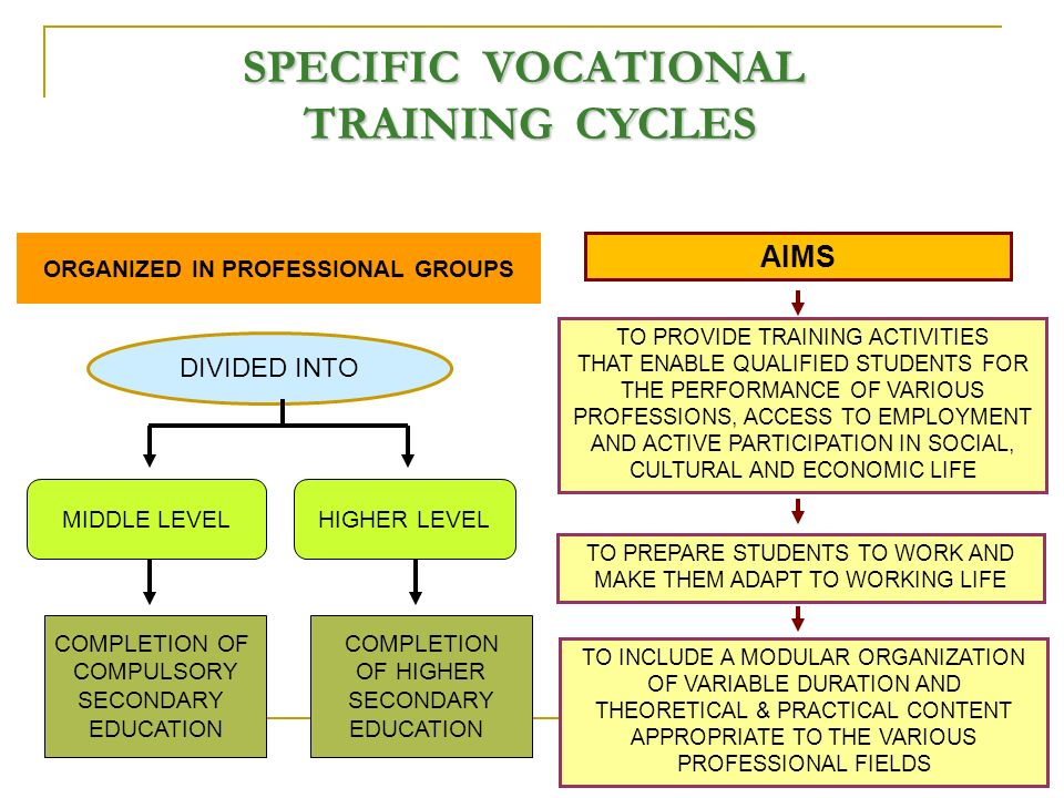 SPECIFIC VOCATIONAL TRAINING CYCLES TO PROVIDE TRAINING ACTIVITIES THAT ENABLE QUALIFIED STUDENTS FOR THE PERFORMANCE OF VARIOUS PROFESSIONS, ACCESS TO EMPLOYMENT AND ACTIVE PARTICIPATION IN SOCIAL, CULTURAL AND ECONOMIC LIFE TO PREPARE STUDENTS TO WORK AND MAKE THEM ADAPT TO WORKING LIFE TO INCLUDE A MODULAR ORGANIZATION OF VARIABLE DURATION AND THEORETICAL & PRACTICAL CONTENT APPROPRIATE TO THE VARIOUS PROFESSIONAL FIELDS DIVIDED INTO AIMS MIDDLE LEVELHIGHER LEVEL ORGANIZED IN PROFESSIONAL GROUPS COMPLETION OF COMPULSORY SECONDARY EDUCATION COMPLETION OF HIGHER SECONDARY EDUCATION