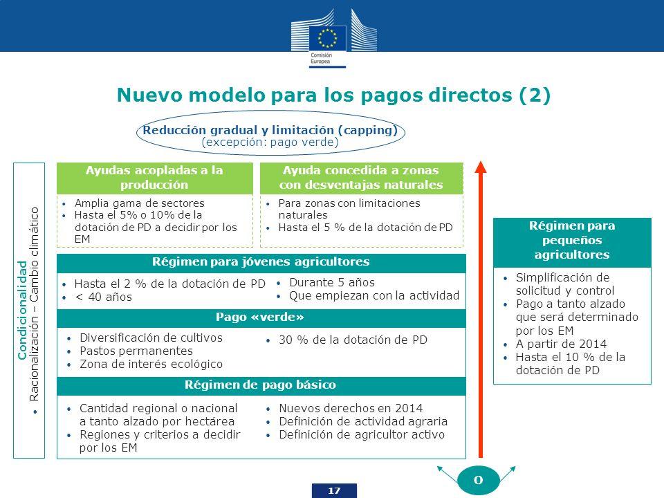 17 Nuevo modelo para los pagos directos (2) Condicionalidad Racionalización – Cambio climático O Régimen de pago básico Nuevos derechos en 2014 Defini