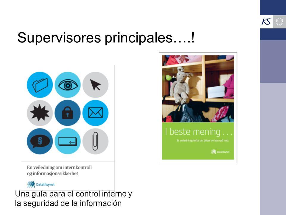 Supervisores principales….! Una guía para el control interno y la seguridad de la información