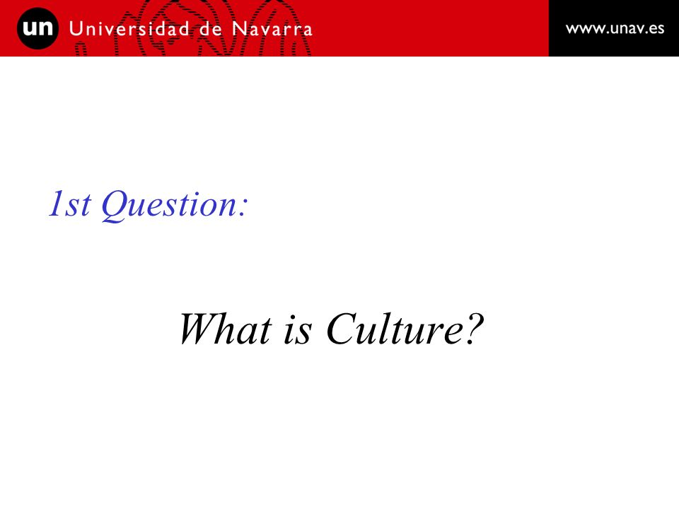 1st Question: What is Culture?