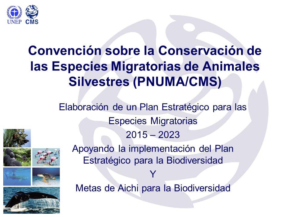 Convención sobre la Conservación de las Especies Migratorias de Animales Silvestres (PNUMA/CMS) Elaboración de un Plan Estratégico para las Especies M