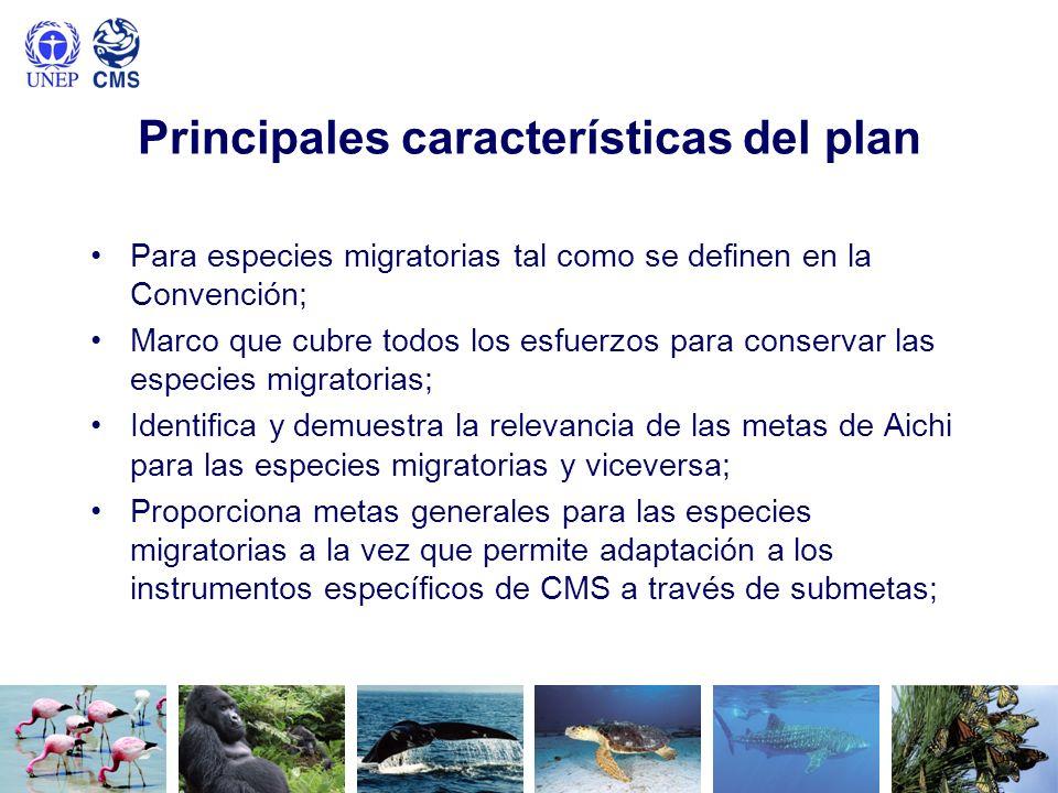 Principales características del plan Para especies migratorias tal como se definen en la Convención; Marco que cubre todos los esfuerzos para conserva