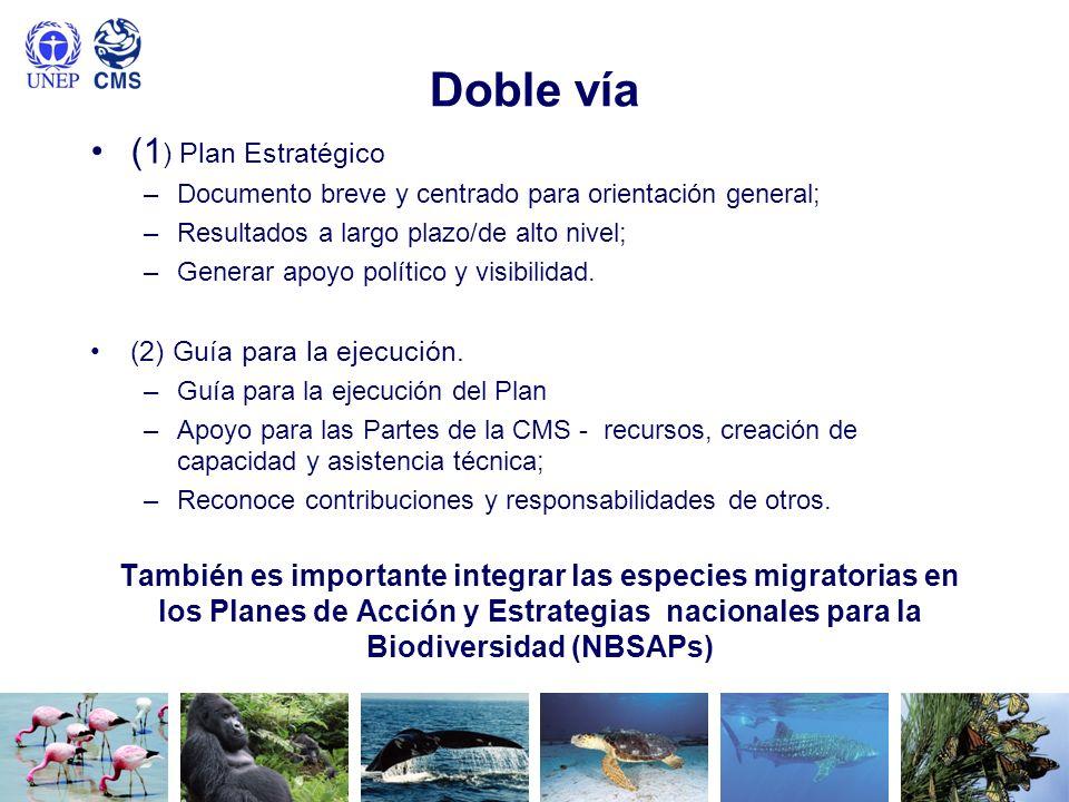 Doble vía (1 ) Plan Estratégico –Documento breve y centrado para orientación general; –Resultados a largo plazo/de alto nivel; –Generar apoyo político
