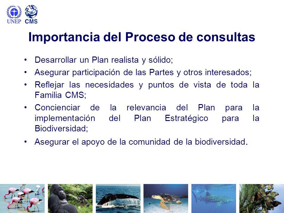 Importancia del Proceso de consultas Desarrollar un Plan realista y sólido; Asegurar participación de las Partes y otros interesados; Reflejar las nec