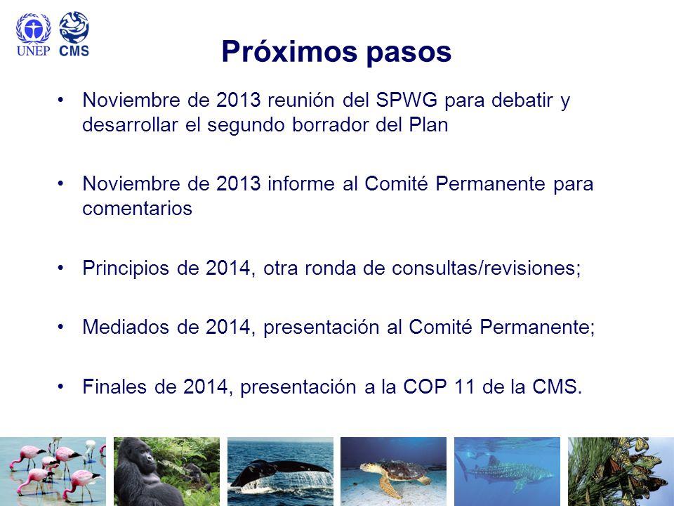 Próximos pasos Noviembre de 2013 reunión del SPWG para debatir y desarrollar el segundo borrador del Plan Noviembre de 2013 informe al Comité Permanen