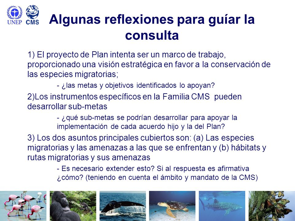 Algunas reflexiones para guíar la consulta 1) El proyecto de Plan intenta ser un marco de trabajo, proporcionado una visión estratégica en favor a la