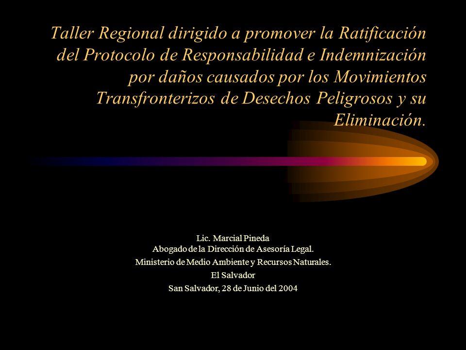 Taller Regional dirigido a promover la Ratificación del Protocolo de Responsabilidad e Indemnización por daños causados por los Movimientos Transfront