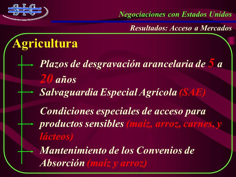 Negociaciones con Estados Unidos Resultados: Acceso a Mercados Agricultura Plazos de desgravación arancelaria de 5 a 20 años Salvaguardia Especial Agr