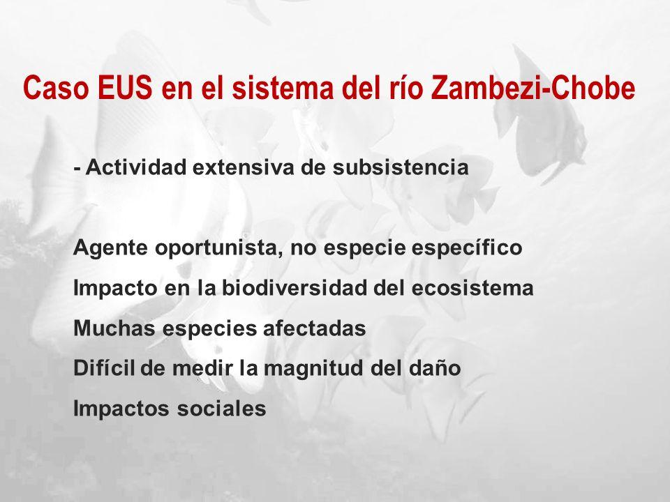 Caso EUS en el sistema del río Zambezi-Chobe - Actividad extensiva de subsistencia Agente oportunista, no especie específico Impacto en la biodiversid