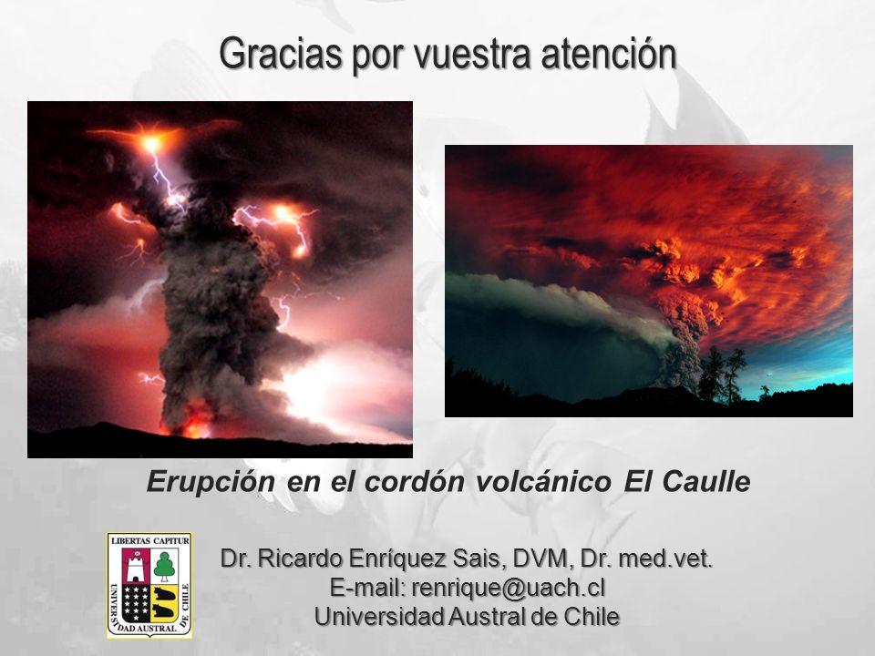 Erupción en el cordón volcánico El Caulle Gracias por vuestra atención Dr. Ricardo Enríquez Sais, DVM, Dr. med.vet. E-mail: renrique@uach.cl Universid