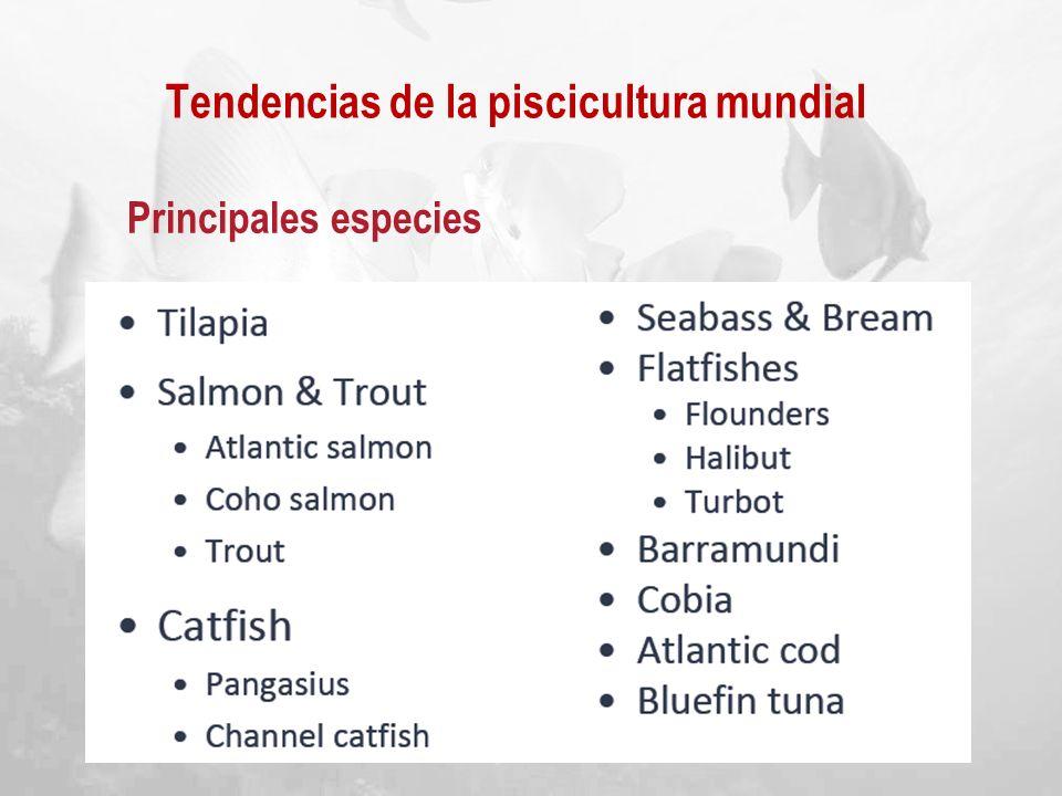 Tendencias de la piscicultura mundial Principales especies