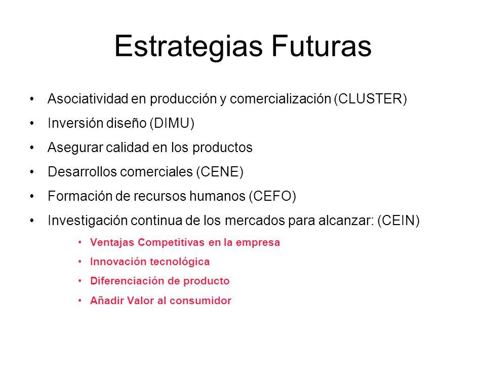 Estrategias Futuras Asociatividad en producción y comercialización (CLUSTER) Inversión diseño (DIMU) Asegurar calidad en los productos Desarrollos com